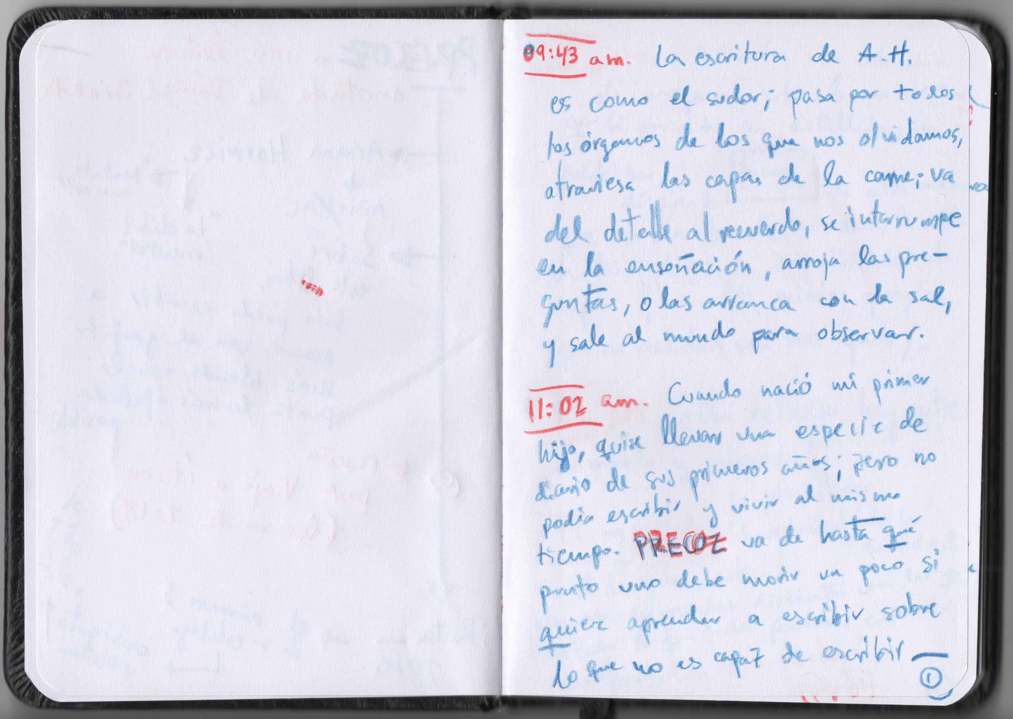 Reseña Precoz 2 - Viaje a Ítaca